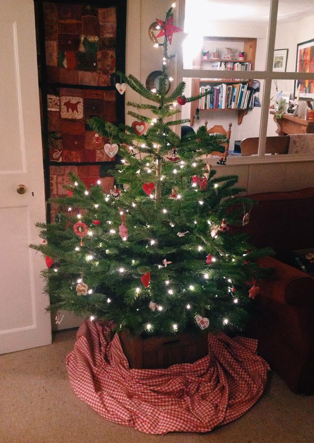 devon christmas tree