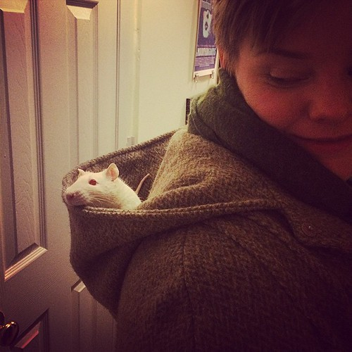 Mitchell tries out the substantial tweed hood on @moriahsimmons's new cape