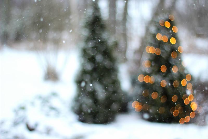 joulu5