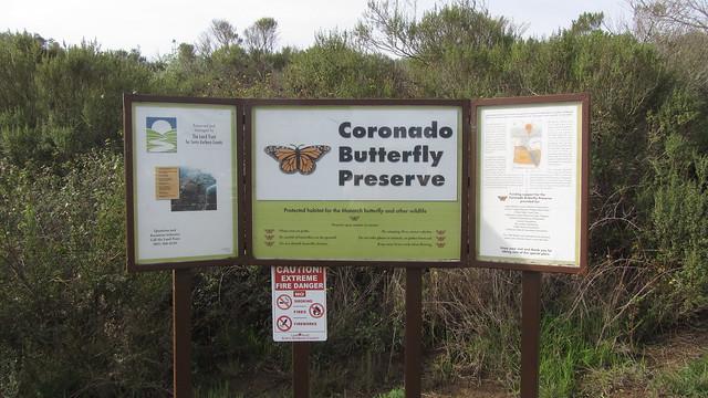 IMG_8188 coronado butterfly preserve goleta