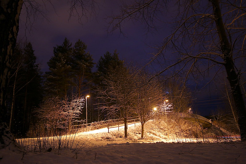 Pedestrian bridge in winter