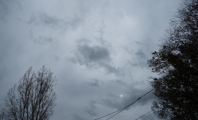 November Dark Afternoon