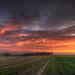 Sunrise Erfordia