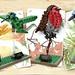 LEGO Ideas 21301 - Birds by THE BRICK TIME Team