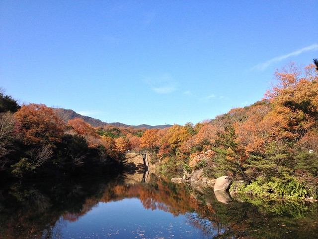 北山公園 for BOULDERING