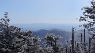 Mount Mitchell campsite