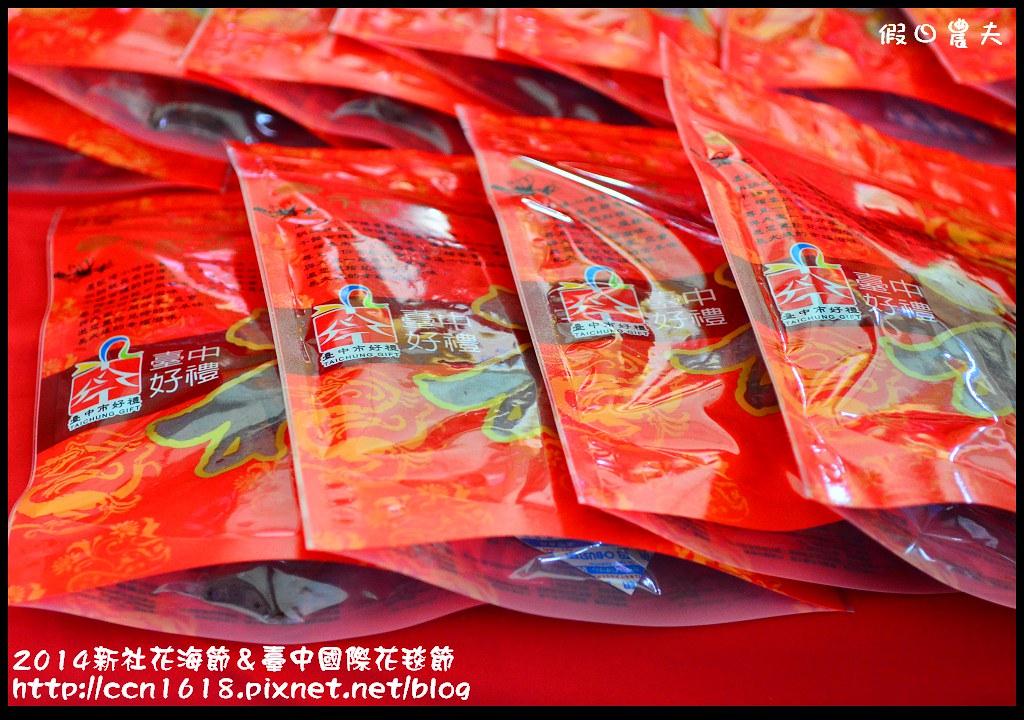 2014新社花海節&臺中國際花毯節DSC_5075