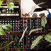Electronic Jungle by Dan McPharlin
