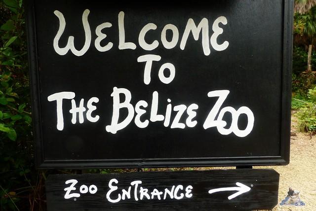 Belize Zoo 19.11.2014 12