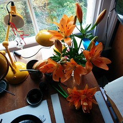 Desk blooms are turning out to be crackers. Makes for a lovely view away from my screen or inks.