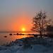 Foggy sunset by tinamar789