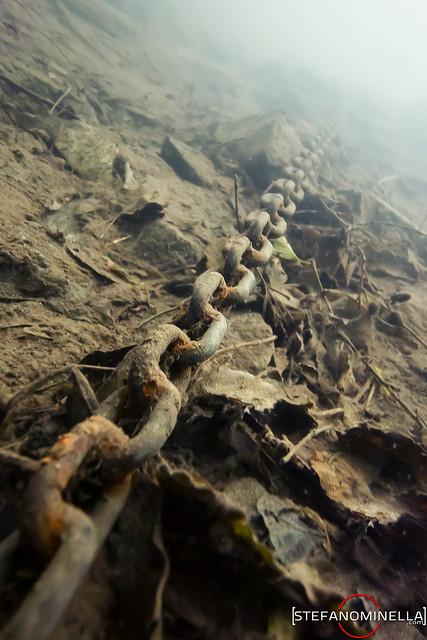 Chain Underwater