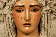 Besamanos -  Virgen de la O  - Diciembre 2014