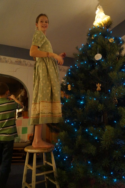To Find the Perfect Christmas Tree by Seven Sisters Blog