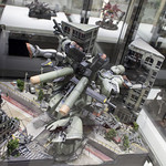 GBWC2014_World_representative_exhibitions-114