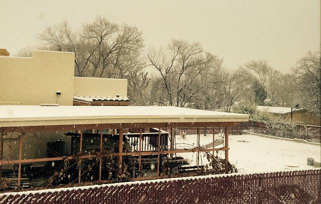 Snow Fall Starts