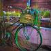 camp bike by allykatimages
