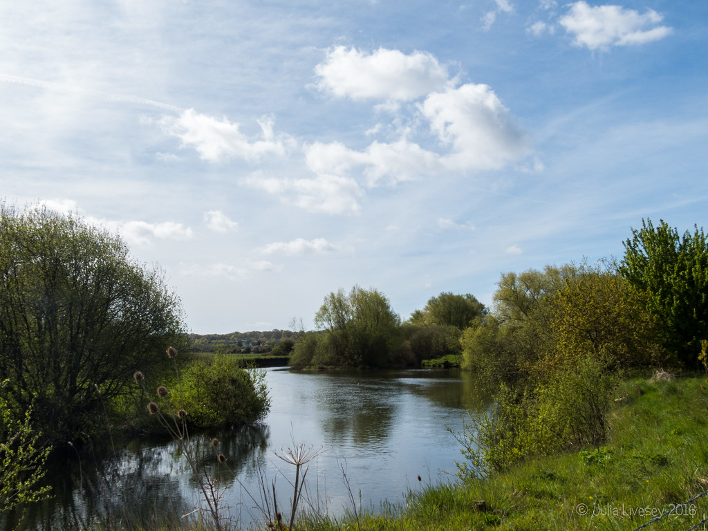 The River Stour at Cowgrove