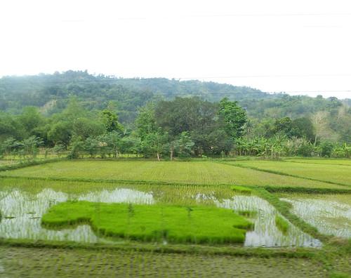 P16-Baguio-Manille-route (22)