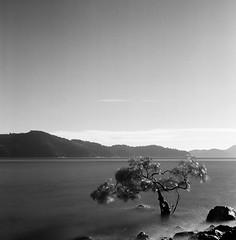 Hamilton Island - Ilford HP5+ 120 film