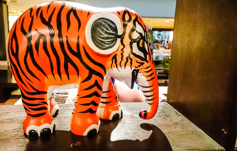 Tiger stripes painted on Elephant parade