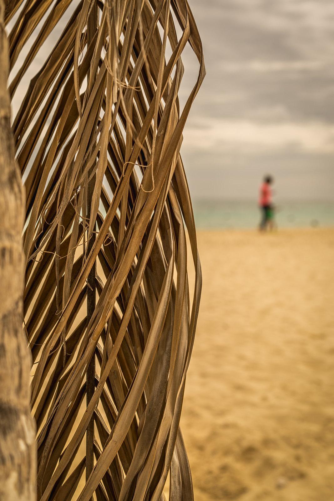 playa del carmen, mexico oct2014