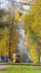 Tver tram Tatra T3SU 217_20141004_548