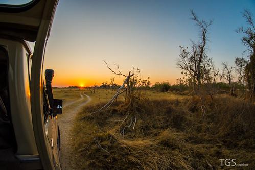 africa nature sunrise landscape photography nikon fotografie natur fisheye safari afrika botswana landschaft sonnenaufgang moremi moremigamereserve botsuana d7100 tillschröder