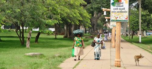 139 Anuradhapura (39)