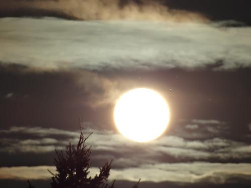 Sonnenaufgang wild empor zur selig machende Sonne wird umnachtete Völker befreien 02486