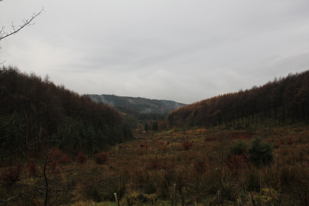 macclesfield forest, shutlingsloe, wildboarclough, buxtors hill