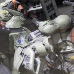 GBWC2014_World_representative_exhibitions-116