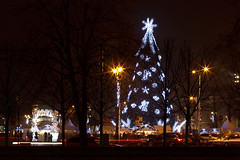 Eglė Katedros aikštėje | Vilnius Christmas tree