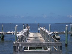 vacation-2008-1-281