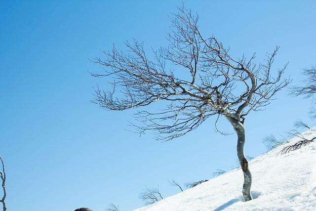 2014-04-13_00301_守門岳.jpg