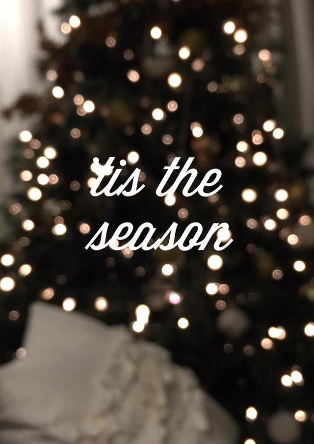'tis the season, bokeh, christmas tree lights