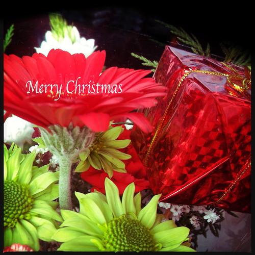 Merry Christmas  ...  dedicated to those we love , who are far away this Christmas