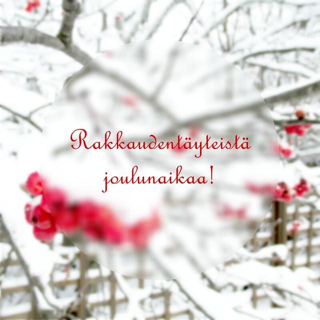 joulu2014