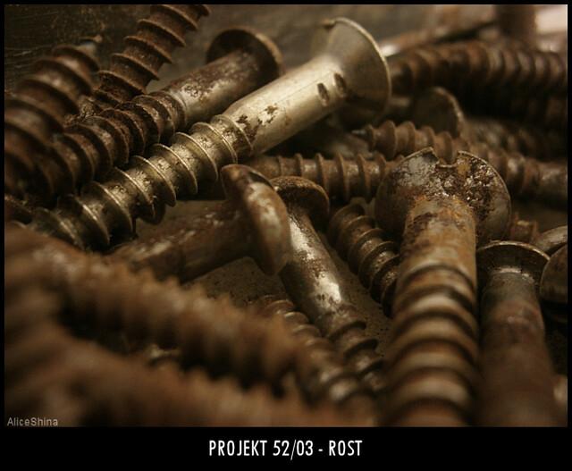 Projekt 52/03 - Rost