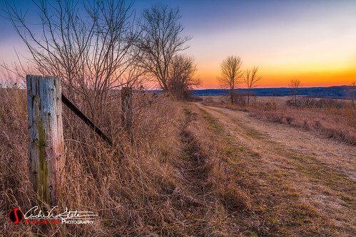 trees sunset orange abandoned nature field grass wisconsin forest canon fence landscape unitedstates post waukesha prairie landscapephotography retzerpark retzernaturecenter 5dmarkiii