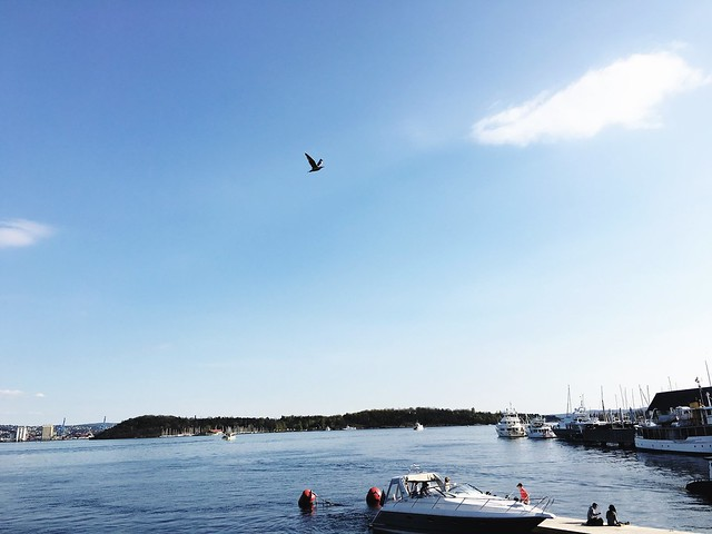 Oslo Norway - The Docks in The Spring | Girls Guide To Scandinavia