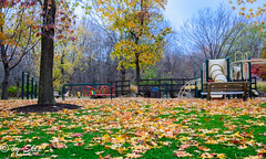 Playground at Chagrin River Park