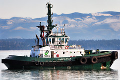 Tugboats - 2014