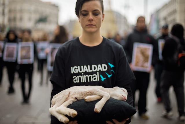 Acto por el Día de los Derechos Animales