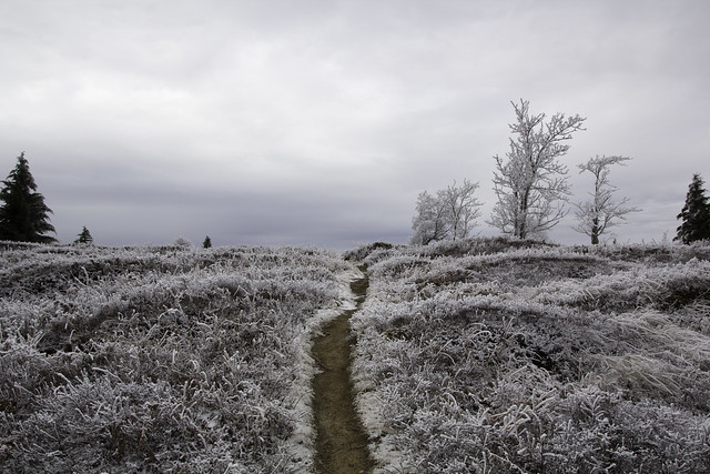 Dolly Sods Winter Solstice Trip 2014
