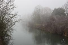 Brouillard sur la Seine (1)