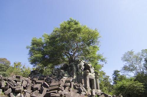 カンボジア旅行