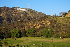 Hollywood Sign from Lake Hollywood Park