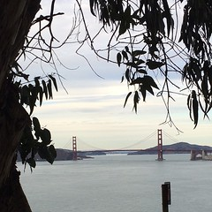 Golden Gate. #sanfrancisco #california thanks @dteweles for showing us this amazing walk!