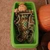 Sensory table makes a good Cabbage Patch bed too
